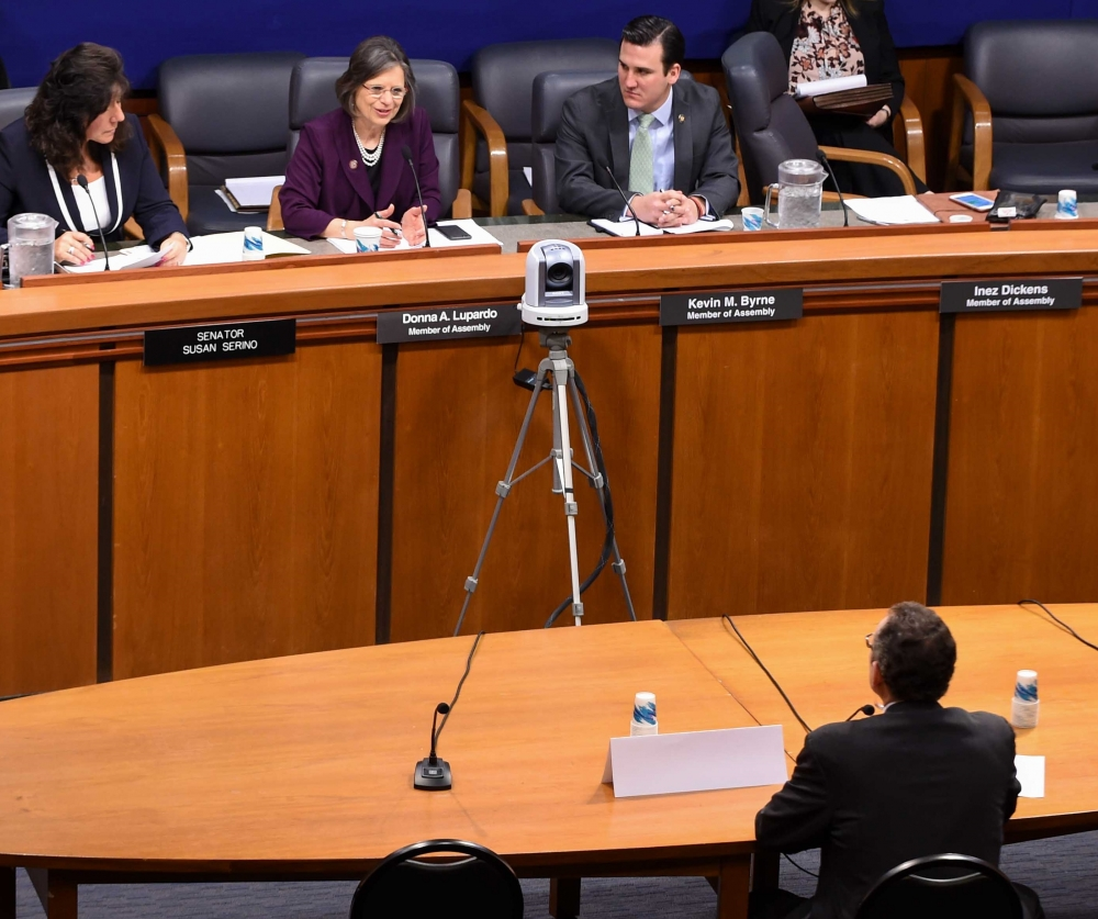 February 28, 2017 – Assemblywoman Lupardo questions a witness at a legislative hearing on elder abuse.